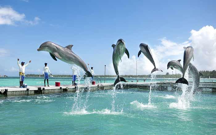Dicas de Passeio em Punta Cana