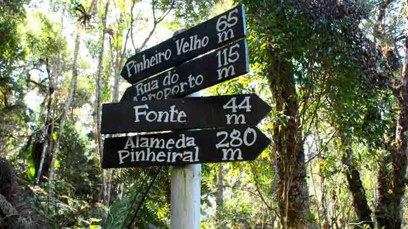 10 Dicas de Passeio em Monte Verde MG um Destino Especial